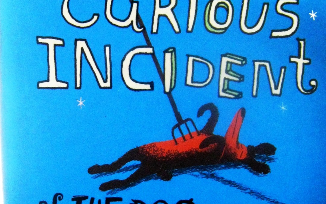 On Writing: The Curious Incident of the Dog in the Night Time