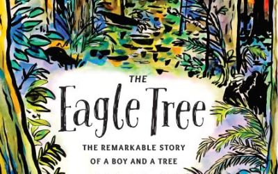 Eagle Tree Book Review: Dragonfly