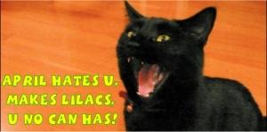 LOLcat Wasteland