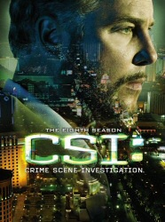 CSI: The Eighth Season DVD cover art