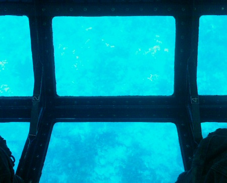 Key Largo: view from the glass bottom boat