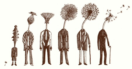 Seven Ages of Dandelion from Threadless