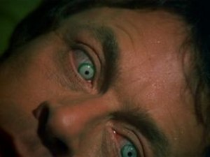 Bill Bixby from The Incredible Hulk