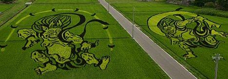Rice field art from Inakadate