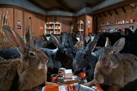 Night of the Lepus: Giant Bunnies