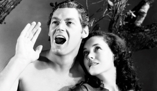 Johnny Weissmuller as Tarzan