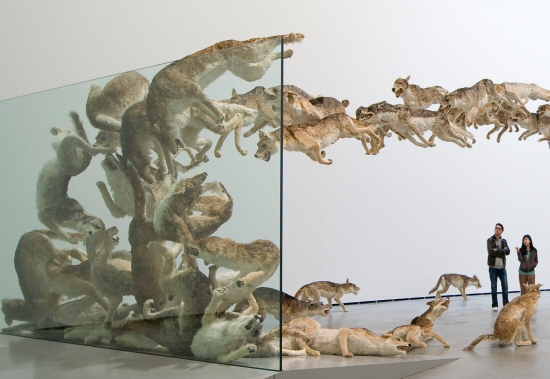 Cai Guo-Qiang: Head On