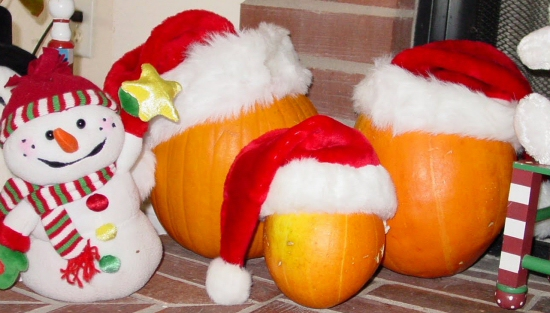 Christmas pumpkins
