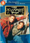 The Wayans Bros.: The Complete First Season (1995) - DVD Review