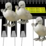 Sinister Ducks