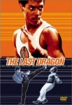 Adverse Video Review: The Last Dragon
