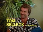 Magnum P.I.: The Complete First Season (1980) - DVD Review