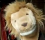 Your Monday Morning Mental Sorbet: So.  He's a Lion.