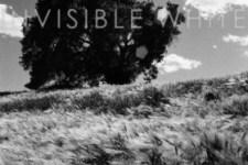 Ancestors: Invisible White