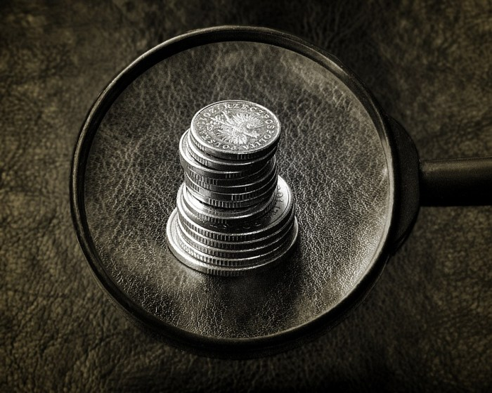 finding money magnifying glass coins Less Money, More Problems: Options for You