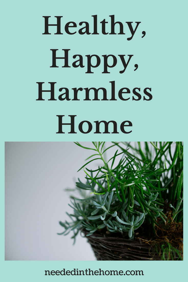 house plant A Healthy, Happy, Harmless Home: 6 Ways To Restore Your Residence neededinthehome.com