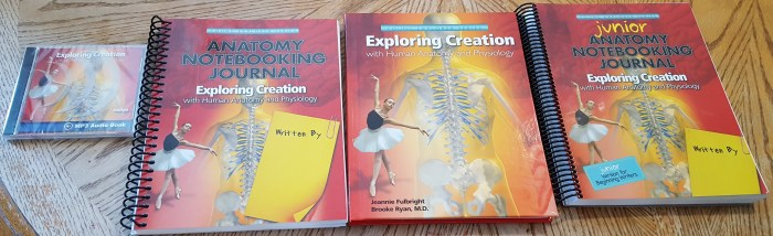 Product Review Of Exploring Creation With Human Anatomy Physiology