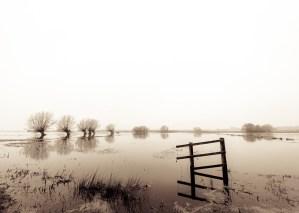 The Sepia Flooding