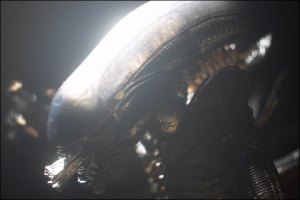 alienpredator_alien-ref_photo_01_dl