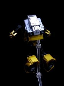 G2 Bumblebee (20)
