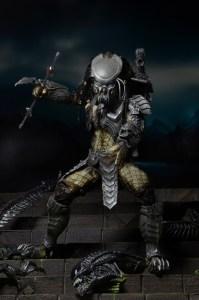 Predator series 14 (4)