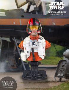 poe-dameron-tfa-x-wing-pilot-classic-mini-bust-4
