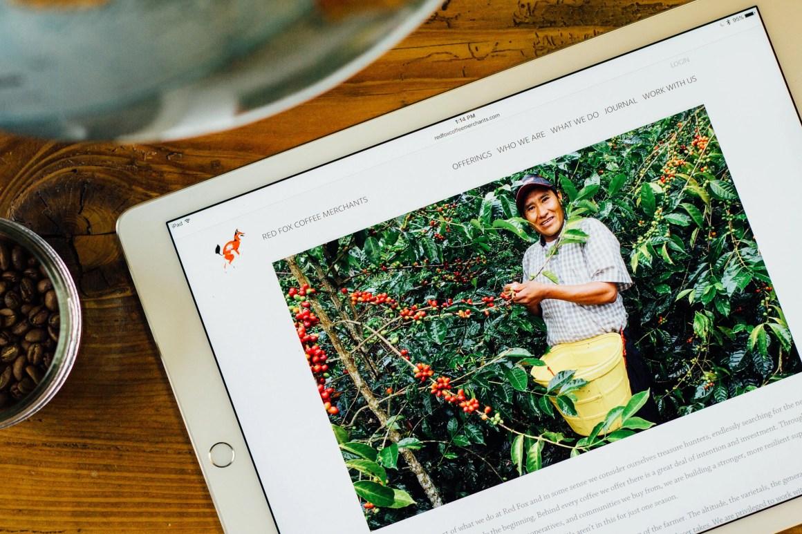 Red Fox website on iPad