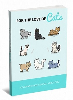 For The Love Of Cats