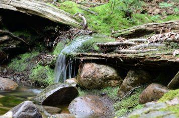 15-silver-peak-trail_1