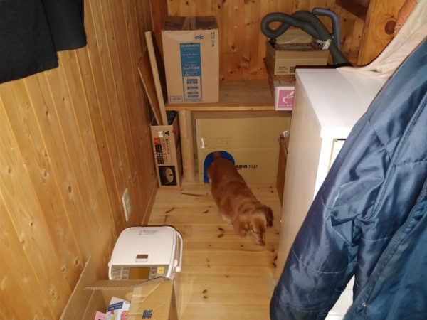 階段下にハリーポッターよりも貧相な小部屋を作った【DIY】