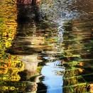 Agua que refleja...