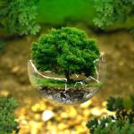 Ideas de negocio ecológicos rentables