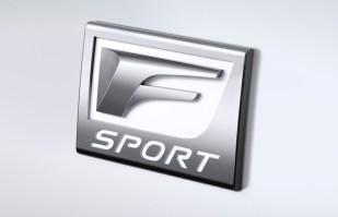 2014-Lexus-IS-350-F-Sport-emblem-detail-1024x660