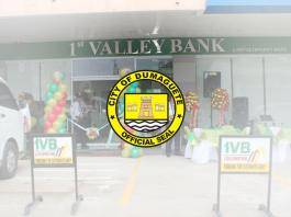 1st Valley Bank
