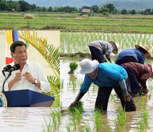 PRRD must push banks to prioritize agriculture