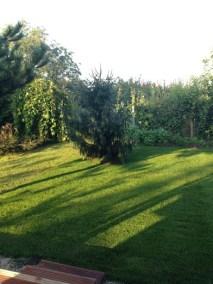 negy-evszak-kerteszet-siofok-bemutato-kert (18)