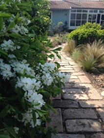 negy-evszak-kerteszet-siofok-bemutato-kert (20)
