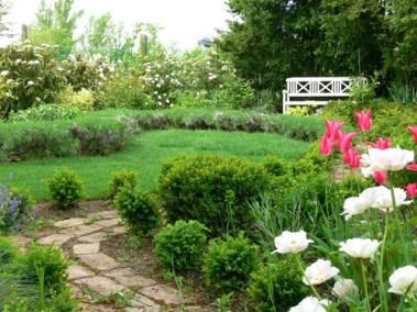 négy-évszak-kertészet-siófok-áruda- (39)