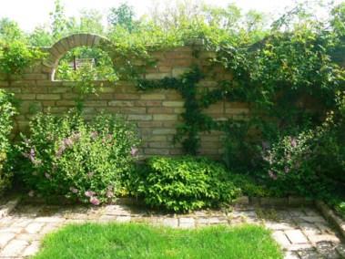 négy-évszak-kertészet-siófok-áruda- (6)