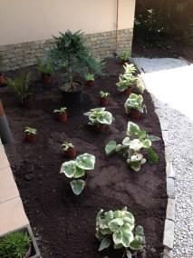 négy-évszak-kertészet-készül-a-kert (6)