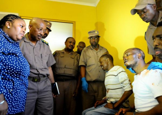 Serial escapee Moyo, paraded before minister – Nehanda Radio