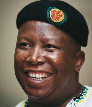 Julius Malema linked to fraudulent tender