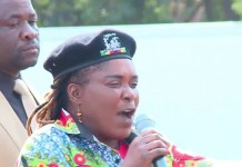 Mandi Chimene, the Manicaland provincial affairs minister