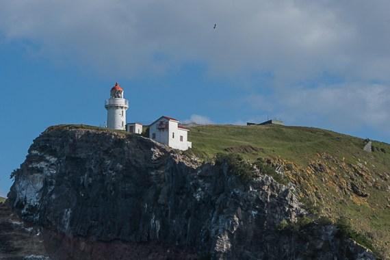 New Zealand Part 13: Otago Peninsula