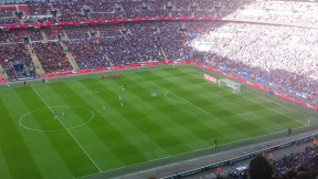 Fellaini's goal
