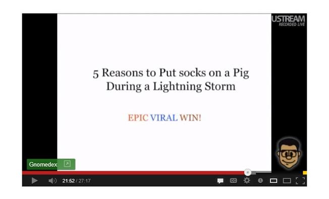 how to go viral - pig lightning socks