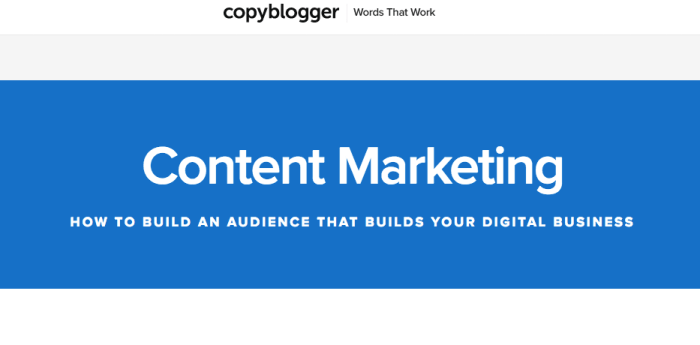 copyblogger title tag example