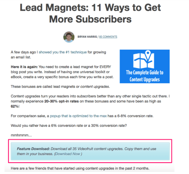 lead magnet example video fruit