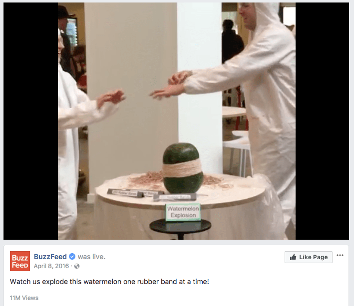 BuzzFeed Watch us explode this watermelon one rubber band at a time