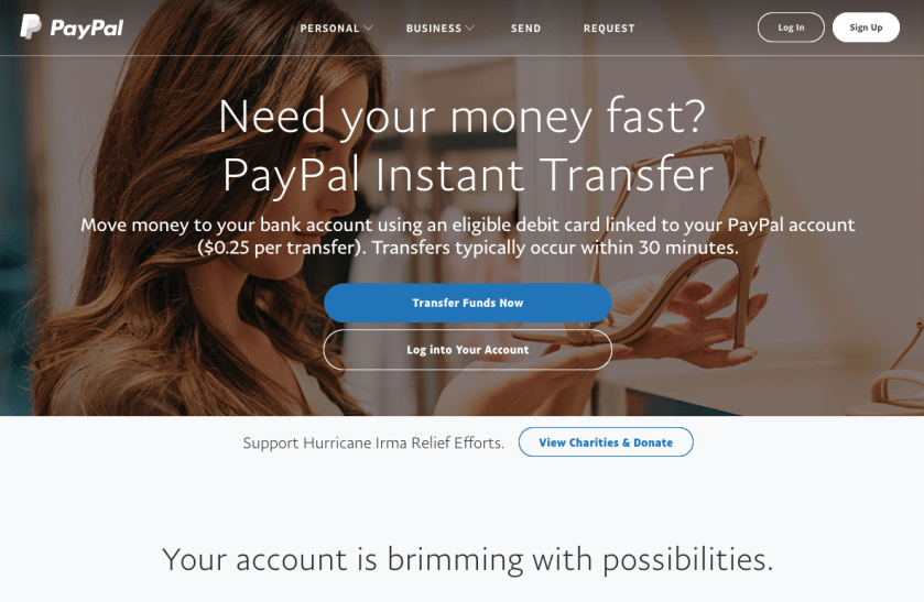 Send Money Pay Online or Set Up a Merchant Account PayPal